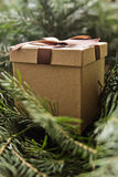 Brown giftbox Royalty Free Stock Photography