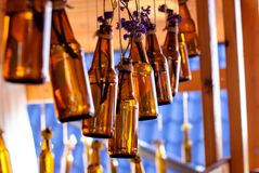 Brown glass bottles with flowers for background. Brown glass bottles with dry blue flowers hanging in the interior for the background Stock Photos