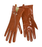 Brown gloves Stock Photos