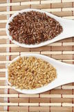 Brown and golden flax seeds Royalty Free Stock Photo