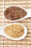 Brown and golden flax seeds Stock Photo