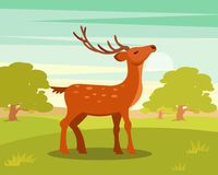 Brown graceful spotted deer with branched horns,, wild animal amongst a backdrop of green meadow and forest vector royalty free illustration