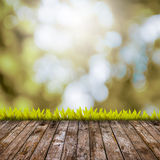 Brown grass with brown bokeh and sunlight and wood floor Stock Images