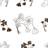 Brown grass sorrel on a white background. Brown silhouette pattern grass forest wood sorrel on a white background Stock Photo