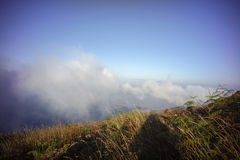 Brown grassland on the mountain with mist. Kew Mae Pan,Thailand Royalty Free Stock Photo