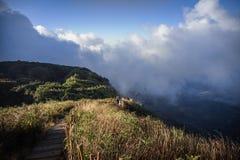 Brown grassland on the mountain. With mist ,Kew Mae Pan,Thailand Stock Photo