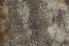 Brown-gray felt. With fleece, abstract background Royalty Free Stock Photos