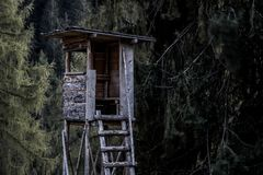 Brown and Gray Wooden Tree House Near Trees royalty free stock photos