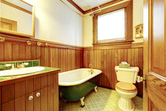 Brown and green antique bathroom with plank paneled walls and gr Royalty Free Stock Photos
