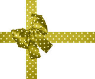 Brown green  bow and ribbon with white polka dots made from silk Stock Images