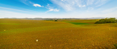 Brown and green field under a blue sky. In Tuscany, Italy Stock Photography