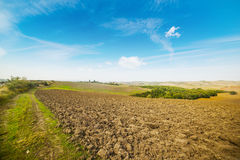 Brown and green field under a blue sky. In Tuscany, Italy Stock Images