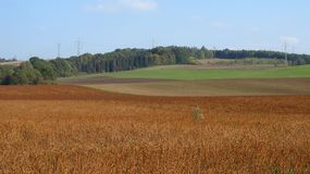 Brown and green fields Stock Photo