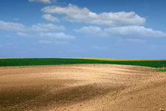 Brown green and yellow field country Royalty Free Stock Photography