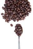 Brown grillade kaffebönan med teaskeden på white Royaltyfria Foton