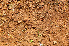 Brown ground background Royalty Free Stock Photo