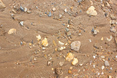 Brown ground soil texture mixed with rocks Stock Images