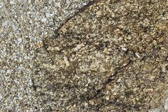 Brown ground and stone surface background , Nature style and empty space for text. Royalty Free Stock Images