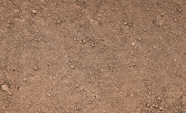 Brown ground surface. Close up natural background.  Royalty Free Stock Photo