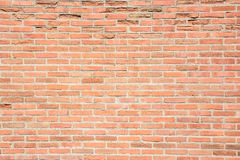 Brown grunge brick wall texture background Royalty Free Stock Images
