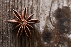 Brown gwiazdowy anyż, wschodnio-azjatycki pikantność na ciemnego brązu tle Fotografia Royalty Free