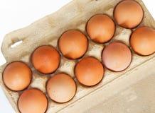 Brown-Hühnereien in einem carboard Kasten Lizenzfreie Stockbilder
