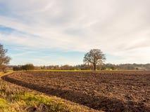 Brown ha arato il campo agricolo fuori del gro del cielo del paesaggio dell'azienda agricola Fotografie Stock Libere da Diritti