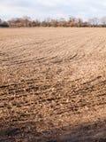 Brown ha arato spazio vuoto AG di autunno dell'azienda agricola del campo delle piste asciutte dello spazio Fotografie Stock