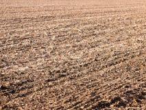 Brown ha arato spazio vuoto AG di autunno dell'azienda agricola del campo delle piste asciutte dello spazio Fotografia Stock