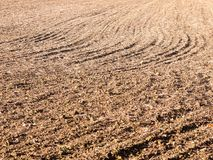 Brown ha arato spazio vuoto AG di autunno dell'azienda agricola del campo delle piste asciutte dello spazio Fotografia Stock Libera da Diritti