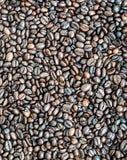 Brown ha arrostito i chicchi di caffè per fondo Fotografia Stock Libera da Diritti