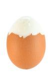 Brown ha bollito l'uovo Immagine Stock