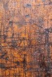 Brown ha esposto all'aria il legname Immagini Stock