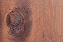 Brown ha esposto all'aria il legno Fotografia Stock Libera da Diritti