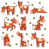 Brown ha macchiato l'insieme della mucca, carattere dell'animale da allevamento in varie illustrazioni di vettore di pose su un f illustrazione vettoriale