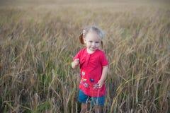 Brown-Haarmädchen, das auf dem Roggengebiet spielt Lizenzfreie Stockfotos