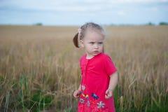 Brown-Haarmädchen, das auf dem Roggengebiet spielt Lizenzfreies Stockbild