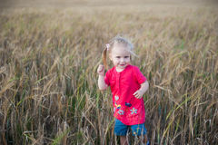 Brown-Haarmädchen, das auf dem Roggengebiet spielt Stockfotos