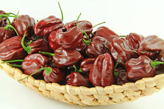 Brown habanero chili peppers Royalty Free Stock Image
