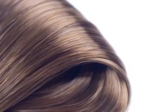 Brown hair. Lock of silken brown hair isolated on white background Stock Photography