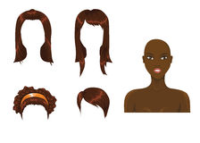 Brown hair assortment Royalty Free Stock Photo