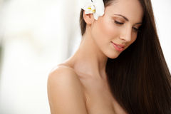 Brown Hair. Beautiful Brunette with long Hair. Stock Photos