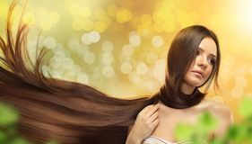 Brown Hair. Beautiful Woman with Healthy Long Hair. Portrait of beautiful young woman with brown long hair over green background Stock Image