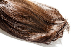 Brown hair piece. Piece of brown hair on white isolated background royalty free stock photography