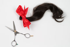 Brown hair in ponytail cut with scissors stock photos