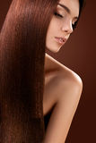Brown Hair. Portrait of Beautiful Woman with Long Hair. High qua Royalty Free Stock Image