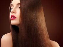 Brown Hair. Portrait of Beautiful Woman with Long Hair. High qua Stock Image