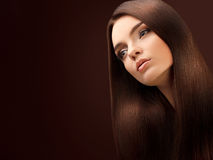 Brown Hair. Portrait of Beautiful Woman with Long Hair. High quality image Stock Photo