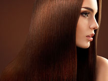 Brown Hair. Portrait of Beautiful Woman with Long Hair. Stock Image