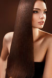 Brown Hair. Portrait of Beautiful Woman with Long Hair. Stock Images
